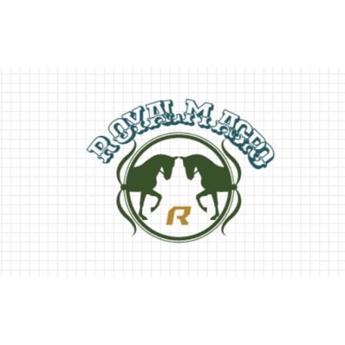 Custom Logo Design #98