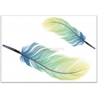 Feather quill pen