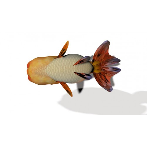 3D Model of Goldfish